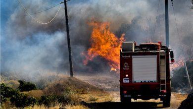 Photo of Πολύ υψηλός κίνδυνος πυρκαγιάς για αύριο Δευτέρα 14 Σεπτεμβρίου στην Κορινθία