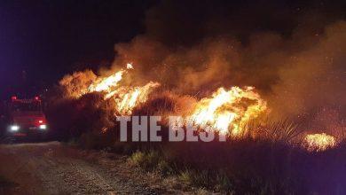 Photo of Μεγάλη φωτιά στην Πάτρα: Οι φλόγες βρίσκονται μια ανάσα από κατοικίες (video+pic)